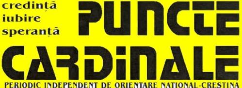 punctex2