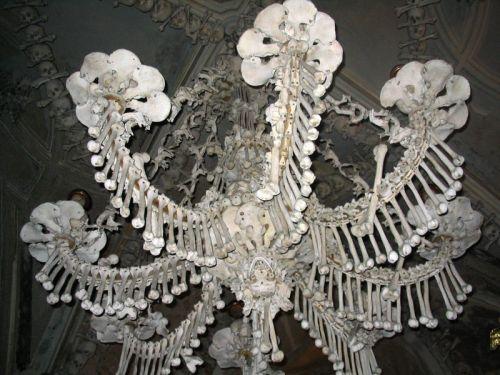 800px-Bone_Chandelabra